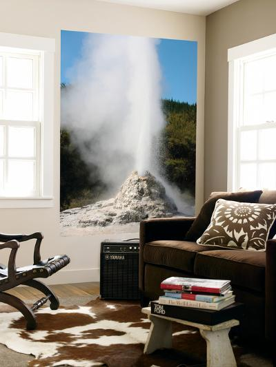 Lady Knox Geyser, Wai-O-Tapu Geothermal Area, Taupo Volcanic Zone, New Zealand-Stocktrek Images-Wall Mural
