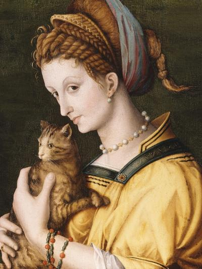 Lady with a Cat, C.1525-30-Francesco Ubertini, Il Bacchiacca-Giclee Print