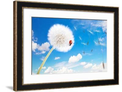 Ladybug On A Dandelion On A Background Of The Sky-Miramiska-Framed Photographic Print