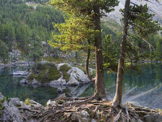 Lago di Saoseo, Grisons, Switzerland-Michael Jaeschke-Photographic Print