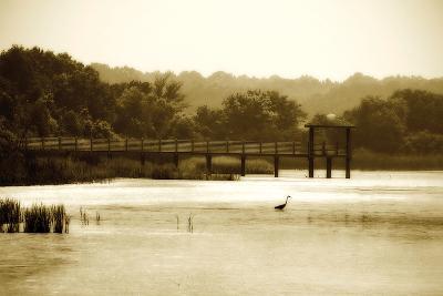 Lagoon I-Alan Hausenflock-Photographic Print