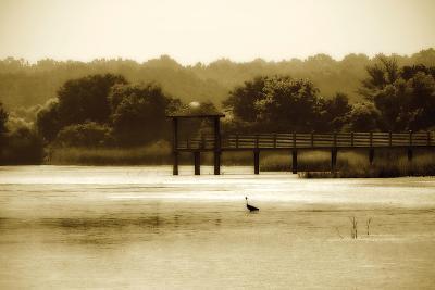 Lagoon II-Alan Hausenflock-Photographic Print