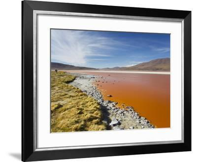 Laguna Roja Is Partially Dried Lagoon Tinted Red by Volcanic Chemicals-Mike Theiss-Framed Photographic Print