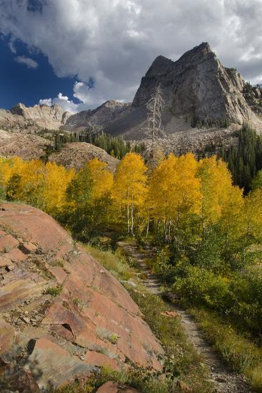 Lake Blanche Trail in Fall Foliage, Sundial Peak, Utah-Howie Garber-Photographic Print