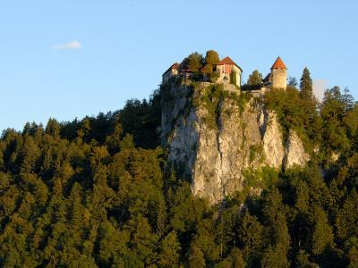 Lake Bled, Bled Castle on Hilltop, Bled, Slovenia-Lisa S^ Engelbrecht-Photographic Print