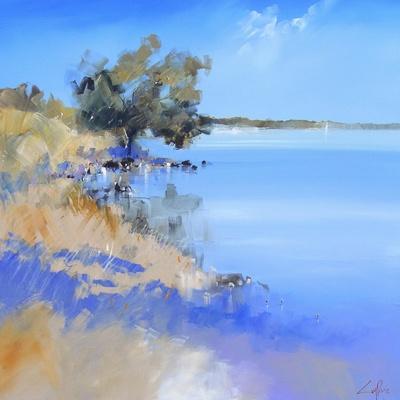 Lake Bolac-Craig Trewin Penny-Framed Art Print