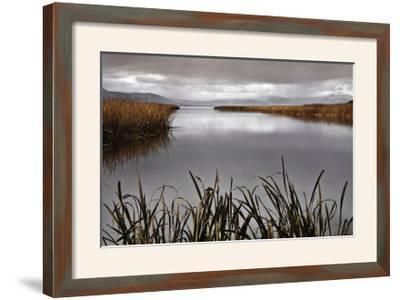 Lake Calm-David Lorenz Winston-Framed Giclee Print