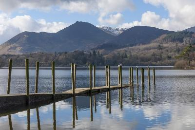 Lake Derwentwater, Barrow and Causey Pike, from the Boat Landings at Keswick-James Emmerson-Photographic Print
