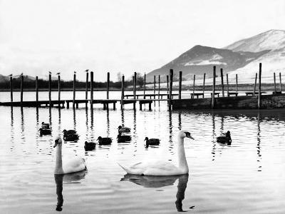 Lake District - Derwentwater 1965-Staff-Photographic Print