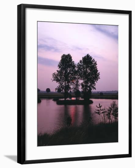 Lake, Island, Trees, Evening Mood-Thonig-Framed Photographic Print