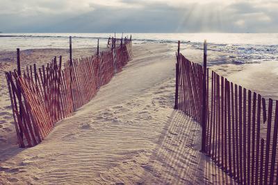 Lake Michigan Beach-Trina Dopp Photography-Photographic Print