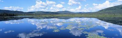 Lake Near Beaver Creek. Yukon Territory, Canada--Photographic Print