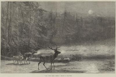 Lake Scene, Early Morning--Giclee Print