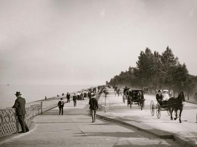 Lake Shore Drive, Lincoln Park, Chicago, Ill.--Photo