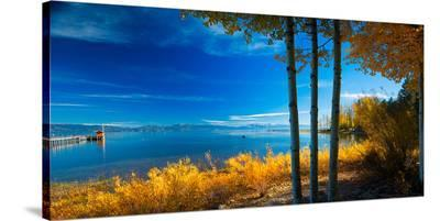 Lake Tahoe X--Stretched Canvas Print