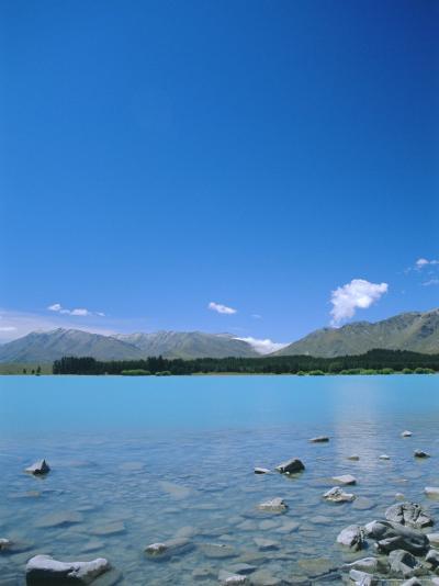 Lake Tekapo, Mount Cook National Park, Canterbury, South Island, New Zealand-Neale Clarke-Photographic Print