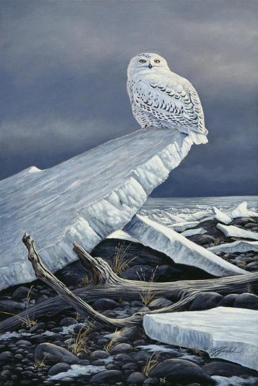 Lakeshore Ice-Wilhelm Goebel-Giclee Print
