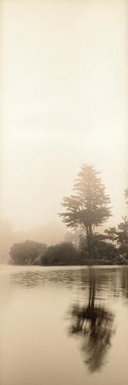 Lakeside Tree #1-Alan Blaustein-Photographic Print
