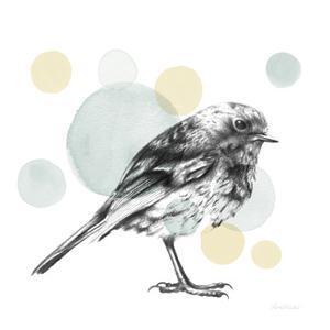 Sketchbook Lodge Bird Neutral by Lamai McCartan