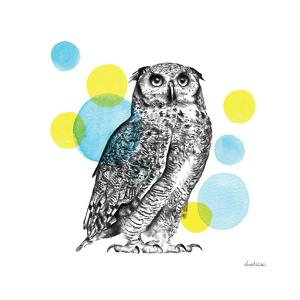 Sketchbook Lodge Owl by Lamai McCartan