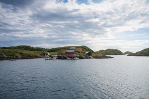 Houses and Small Harbor on Island in Northern Norway by Lamarinx