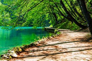 Path near A Forest Lake in Plitvice Lakes National Park, Croatia by Lamarinx