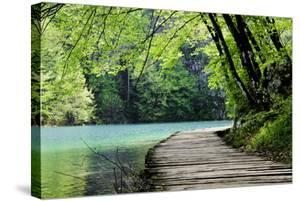 Wooden Path Near A Forest Lake by Lamarinx