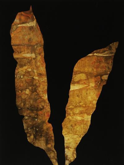 Laminana II-Kari Taylor-Giclee Print