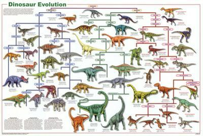 Laminated Dinosaur Evolution Educational Science Chart Poster