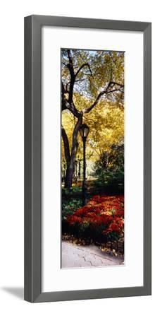 Lamppost in a Park, Central Park, Manhattan, New York City, New York, USA
