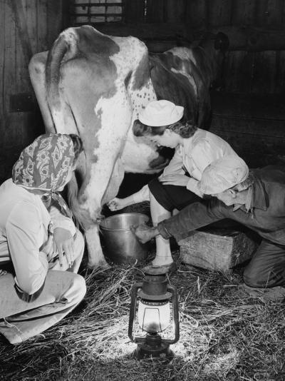 Land Girls Millking Cows on a Farm During World War II-Robert Hunt-Photographic Print