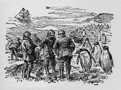 Landed on a Small Island Inhabited by Myriads of Penguins, C1918--Giclee Print