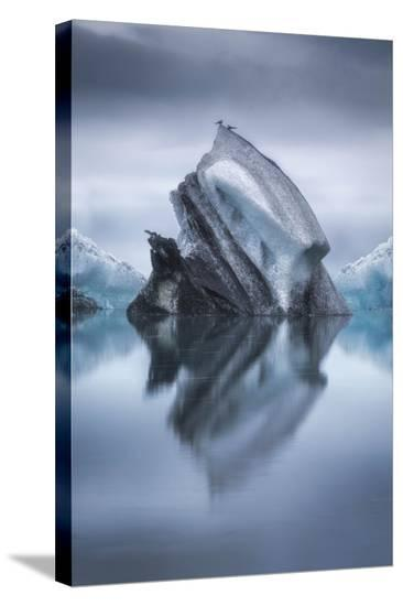 Landing On Iceberg-Lucie Bressy-Stretched Canvas Print