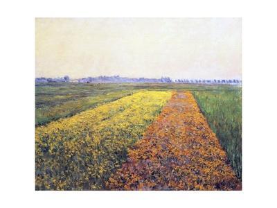 https://imgc.artprintimages.com/img/print/landscape-1848_u-l-pwgiju0.jpg?p=0