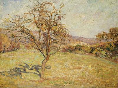 Landscape, 1890-Jean Baptiste Armand Guillaumin-Giclee Print