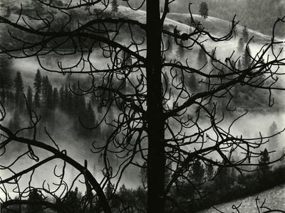 https://imgc.artprintimages.com/img/print/landscape-europe-1968_u-l-q1g6r9g0.jpg?p=0