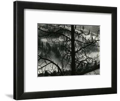 Landscape, Europe, 1968-Brett Weston-Framed Photographic Print