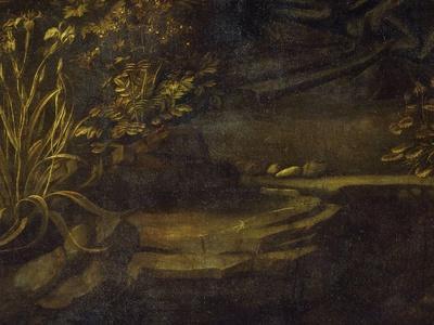 https://imgc.artprintimages.com/img/print/landscape-from-the-virgin-of-the-rocks-1483-86-bottom-left-hand-detail_u-l-phtq3x0.jpg?p=0