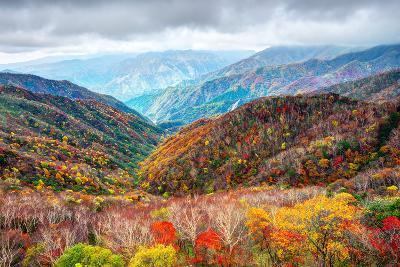 Landscape in Nikko National Park in Tochigi, Japan-Sean Pavone-Photographic Print