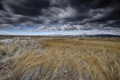 https://imgc.artprintimages.com/img/print/landscape-in-san-luis-valley-colorado_u-l-pu6nmx0.jpg?p=0