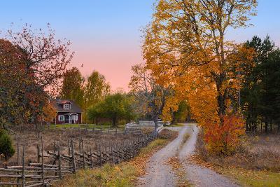 Landscape in Sweden-almgren-Photographic Print