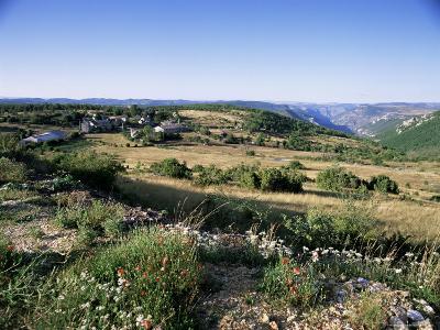 Landscape, Languedoc-Roussillon, France-David Hughes-Photographic Print
