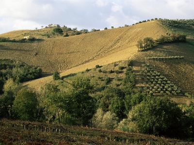 Landscape Near Chieti, Abruzzo, Italy-Michael Newton-Photographic Print