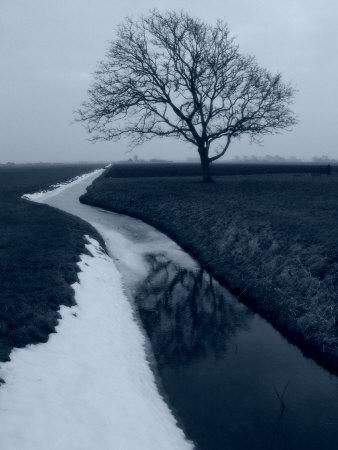 https://imgc.artprintimages.com/img/print/landscape-photograph-a-winter-scenery-in-spanbroek-the-netherlands_u-l-p9bius0.jpg?p=0