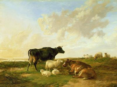 Landscape with Cows and Sheep, 1850-Thomas Sidney Cooper-Giclee Print
