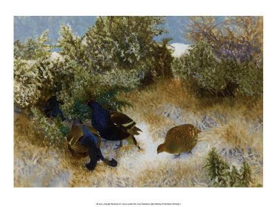 Landscape with Grouse, 1911-Bruno Liljefors-Art Print
