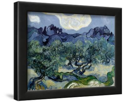 Landscape with Olive Trees-Vincent van Gogh-Lamina Framed Art Print