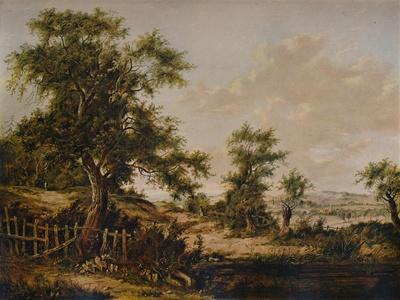https://imgc.artprintimages.com/img/print/landscape-with-pool-and-tree-in-foreground-1828_u-l-q13fuku0.jpg?p=0