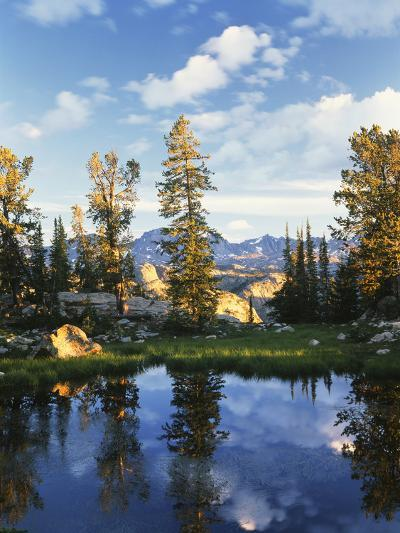 Landscape with Reflection of Lake, Wyoming, USA-Scott T^ Smith-Photographic Print