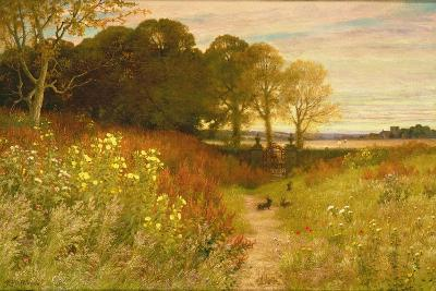 Landscape with Wild Flowers and Rabbits-Robert Collinson-Giclee Print